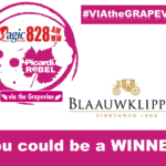 Via the Grapevine – Blaauwklippen