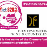 Via the Grapevine – Diemersfontein