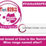 Via the Grapevine – Overhex Winery