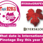Via the Grapevine – Beyerskloof