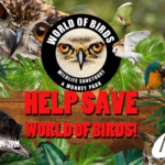 World of Birds – Charity Broadcast